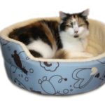 Cosipet Scatty Cat Round Bed £25
