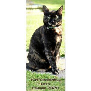 Tortoiseshell Cats Calendar 2020