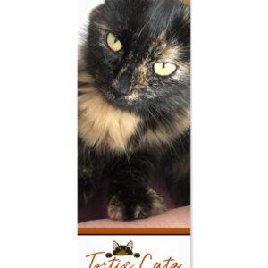 Tortoiseshell Cats Calendar 2021